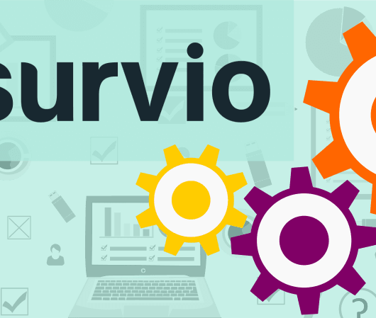 Survio update